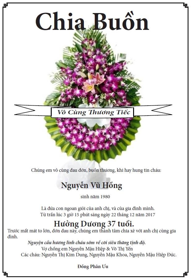 NguyenVuHong